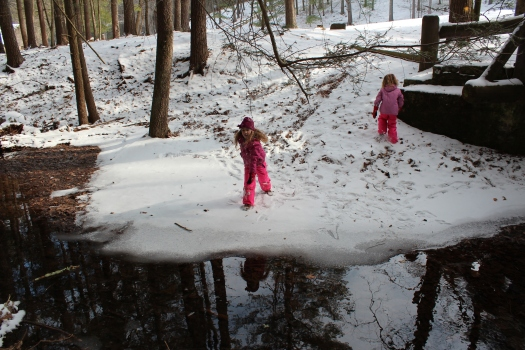 Extra hard Pooh sticks needed to break the ice!