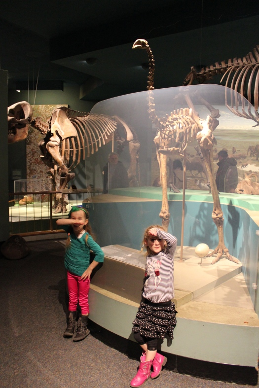 Even a set of Moa bones which these two Kiwis were delighted to find.