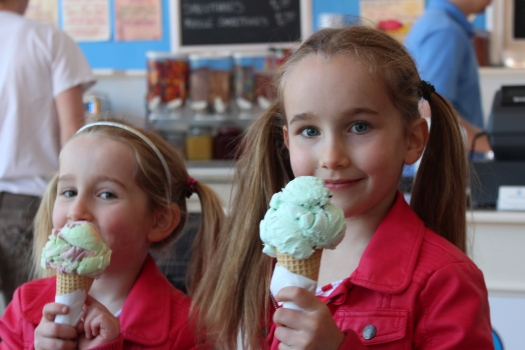 We settled on mint choc chip and rainbow sherbet - yummy!