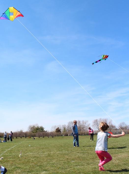 Edie looking quite the professional kite handler.