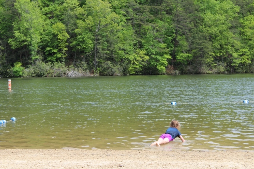 Olive playing around in the lake.