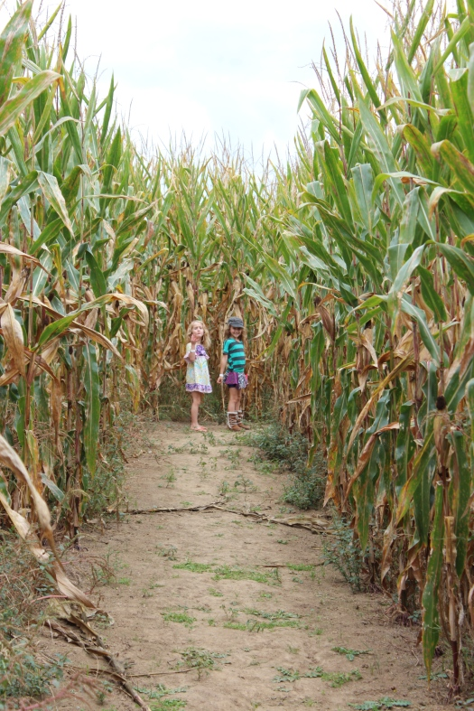 Children of the corn...sorry...couldn't resist!