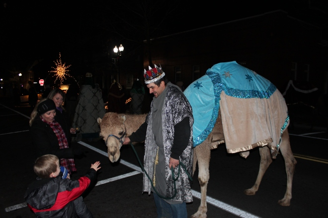 What the...? A camel? In Winchester?