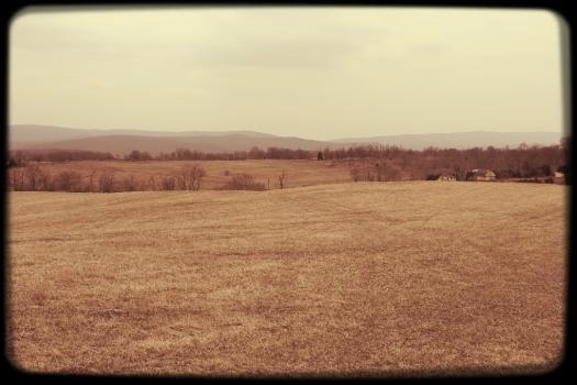 Woodley Farm, Berryville. Home to the 2014 Blue Ridge Hunt races.