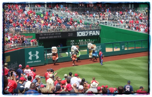 Keeping the crowd entertained is an important part of a baseball game. This is called the President's race!
