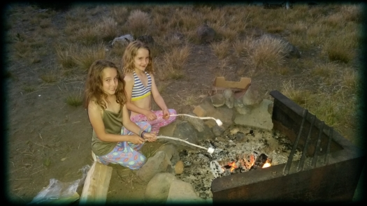 Which were followed by the only acceptable dessert choice when camping - s'mores!